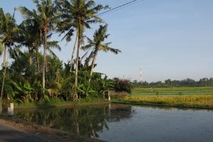 Bali2007_0039