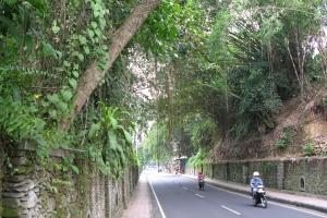 Bali2007_0057