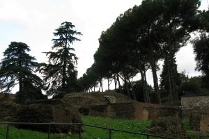 2008 Rom_0229