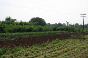 Thailand2008_0079