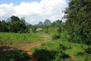 Thailand2008_0115