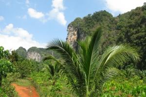 Thailand2008_0118