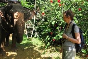 Thailand2008_0123