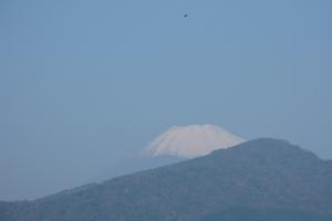 Japan2009_0125