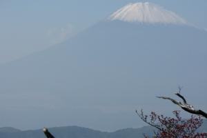Japan2009_0157