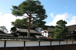 Japan2009_0217