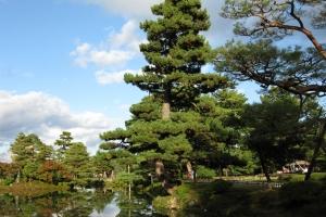 Japan2009_0284