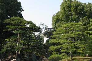 Japan2009_0542