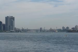 NY2009_0023