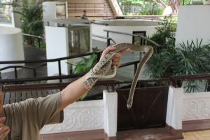 2010 Bangkok_0177