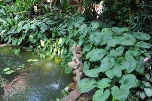 2010 Bangkok_0204