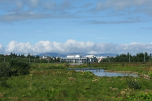 2010 Island_0174