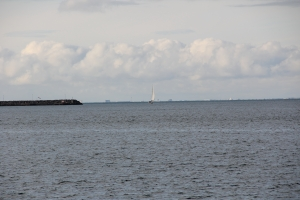 2010 Island_0195