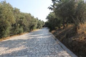 2011 Athen_0009