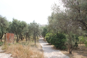 2011 Athen_0082
