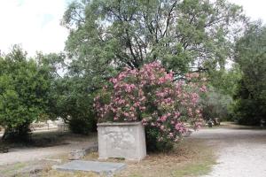 2011 Athen_0176