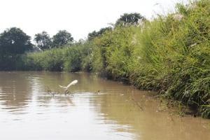 2011 Cambodia_0280