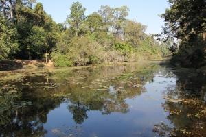 2011 Cambodia_0490