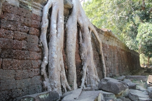 2011 Cambodia_0518