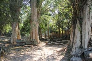2011 Cambodia_0526