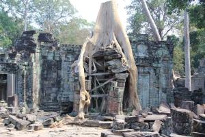 2011 Cambodia_0559