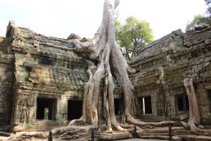 2011 Cambodia_0599