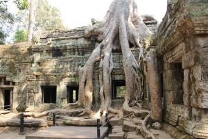 2011 Cambodia_0601