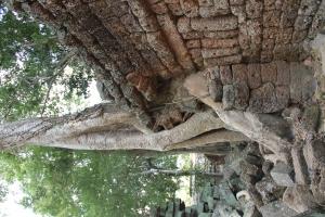 2011 Cambodia_0614