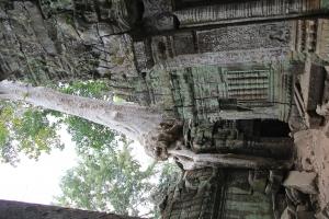 2011 Cambodia_0622