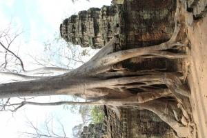 2011 Cambodia_0624