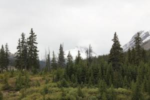 2011 Canada_0427