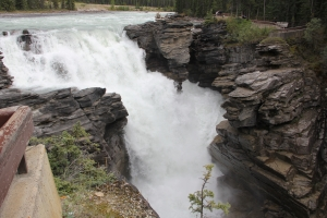 2011 Canada_0474