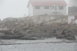 2011 Canada_0708