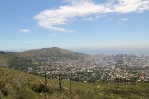 2012 Cape Town _0108