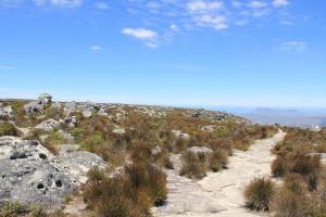 2012 Cape Town _0124