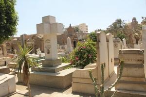 2012 Cairo_0080