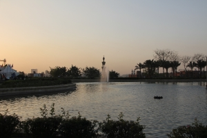 2012 Cairo_0127