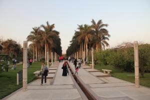 2012 Cairo_0128