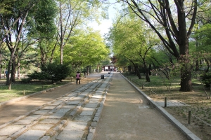 2013 SydKorea_0207