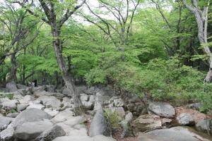 2013 SydKorea_0459