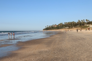 2014 Gambia_0006