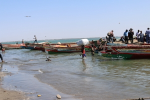 2014 Gambia_0021