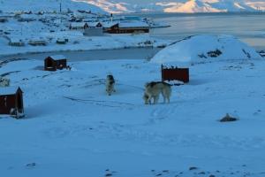 2014 Ilulissat_0058
