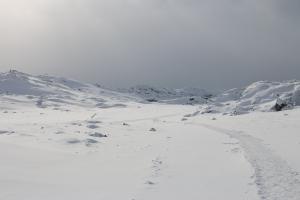 2014 Ilulissat_0333