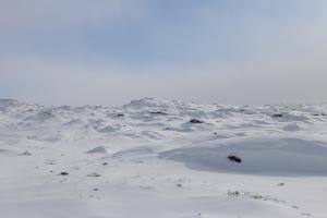 2014 Ilulissat_0335