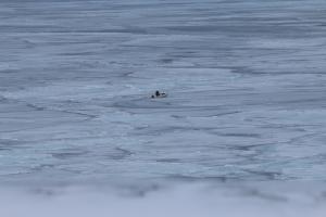 2014 Ilulissat_0404