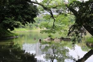 2014 Japan_0607
