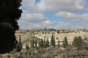 2016 Israel_0066