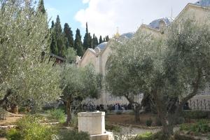 2016 Israel_0094