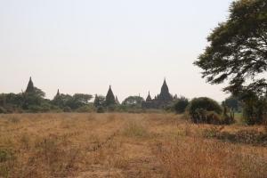 2016 Myanmar_0232